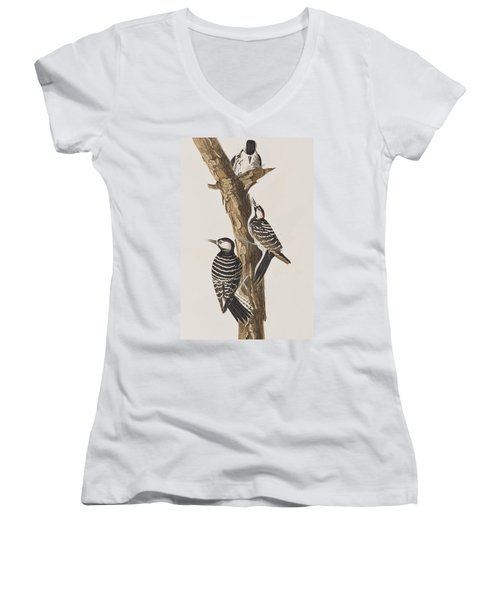 Red-cockaded Woodpecker Women's V-Neck T-Shirt