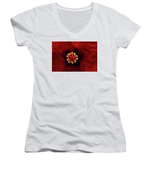 Red Hibiscus Women's V-Neck T-Shirt