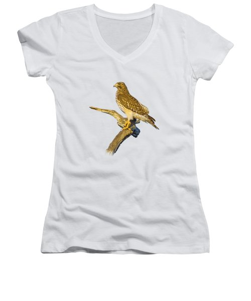 Red Shouldered Hawk Perch Women's V-Neck (Athletic Fit)