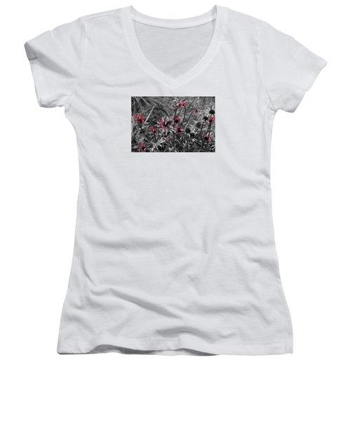 Red Streaks Women's V-Neck T-Shirt