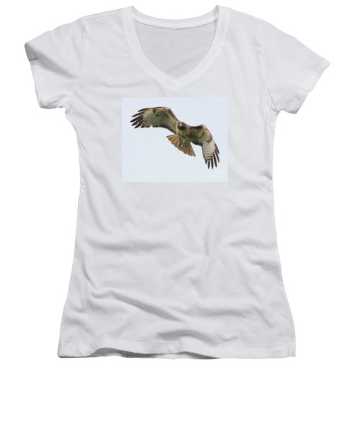 Red Tailed Hawk Finds Its Prey Women's V-Neck