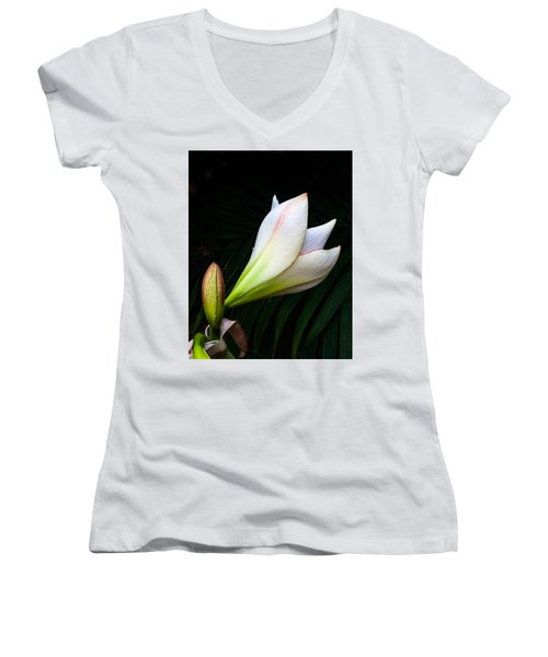 Refined Elegance Women's V-Neck