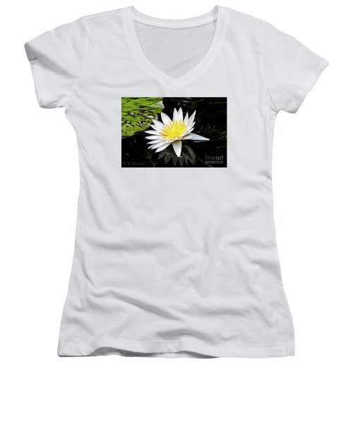 Reflective Lily Women's V-Neck (Athletic Fit)