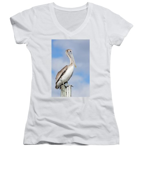 Regal Bird Women's V-Neck