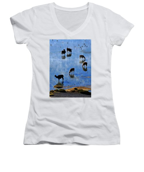 Women's V-Neck T-Shirt (Junior Cut) featuring the photograph Rendezvous by Skip Hunt