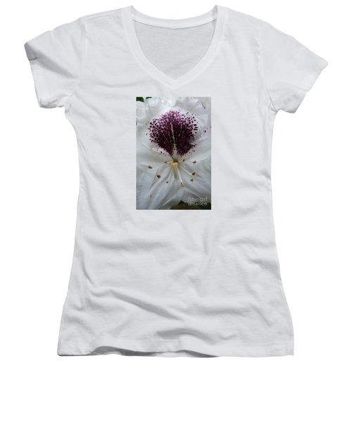 Rhododendron 2 Women's V-Neck T-Shirt (Junior Cut) by Jean Bernard Roussilhe