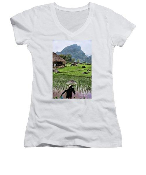 Rice Fields Women's V-Neck T-Shirt (Junior Cut) by Chuck Kuhn
