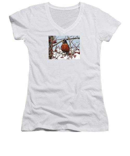 Robin In Winter Women's V-Neck T-Shirt (Junior Cut) by Marcia Lee Jones