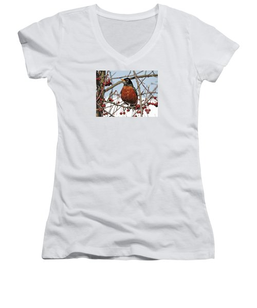 Robin In Winter Women's V-Neck T-Shirt
