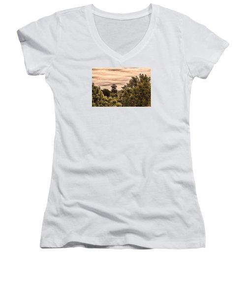 Robinson 3d Women's V-Neck T-Shirt