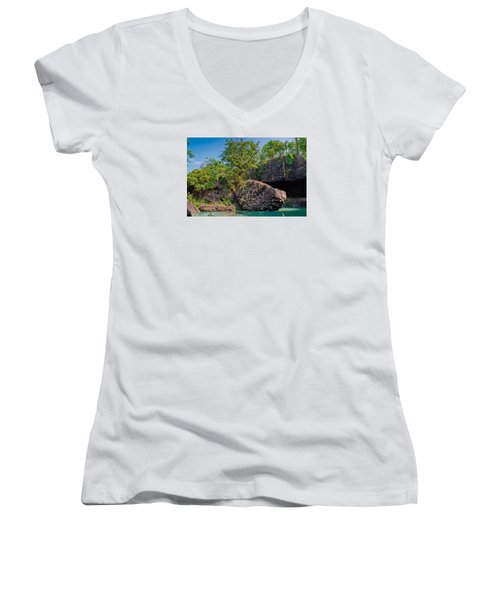 Rock And Trees Women's V-Neck