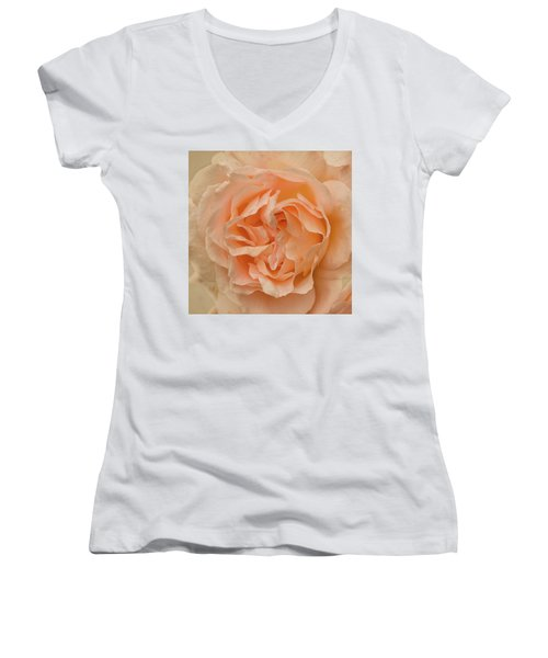 Women's V-Neck T-Shirt (Junior Cut) featuring the photograph Romantic Rose by Jacqi Elmslie