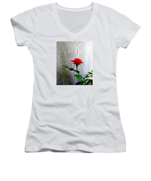Rose Women's V-Neck T-Shirt (Junior Cut)