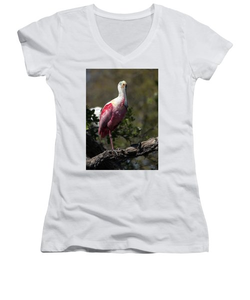 Roseate Spoonbill Women's V-Neck T-Shirt (Junior Cut) by Lamarre Labadie