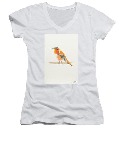 Rufous Hummingbird Women's V-Neck T-Shirt