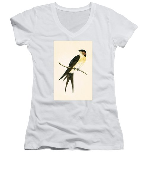 Rufous Swallow Women's V-Neck T-Shirt (Junior Cut) by English School