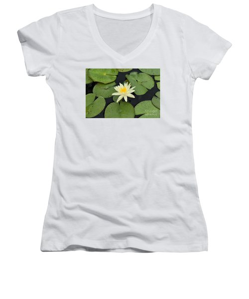 Sacred Lotus Women's V-Neck