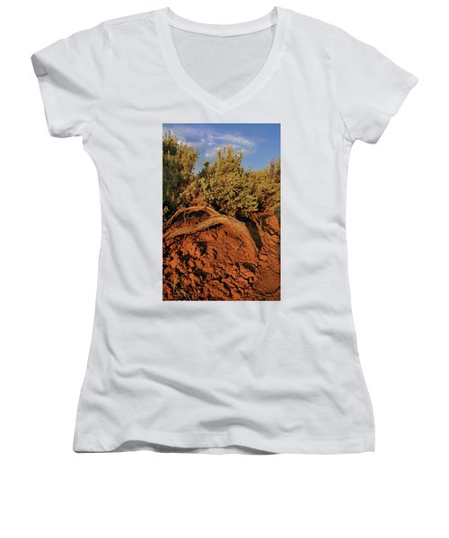 Sagebrush At Sunset Women's V-Neck
