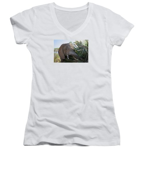 Samburu Elephant Women's V-Neck T-Shirt