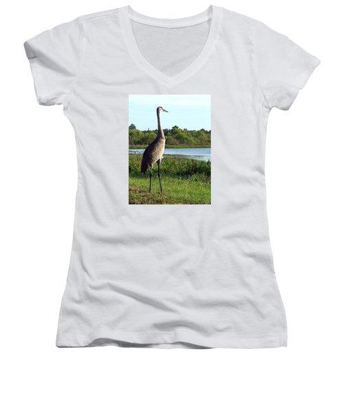 Sandhill Crane 019 Women's V-Neck T-Shirt (Junior Cut) by Chris Mercer