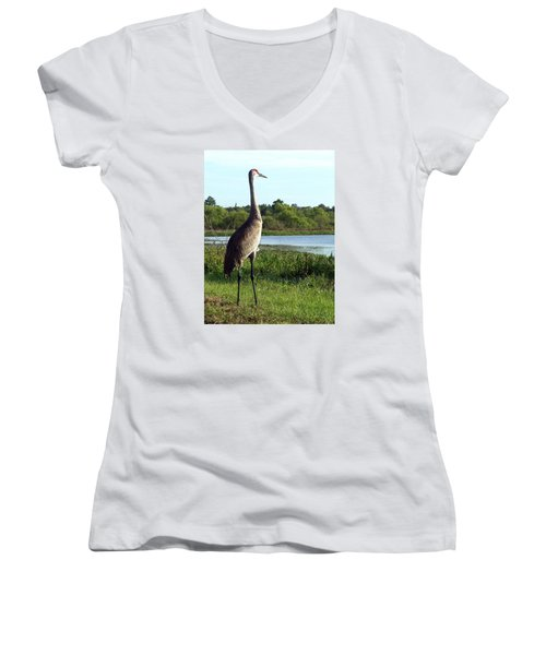 Sandhill Crane 019 Women's V-Neck T-Shirt