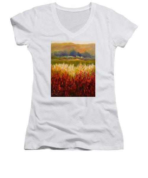Santa Rosa Valley Women's V-Neck T-Shirt