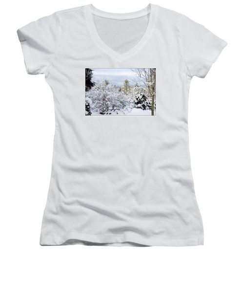 Women's V-Neck T-Shirt (Junior Cut) featuring the photograph Saratoga Winter Scene by Lise Winne