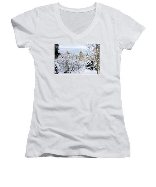 Saratoga Winter Scene Women's V-Neck T-Shirt (Junior Cut) by Lise Winne