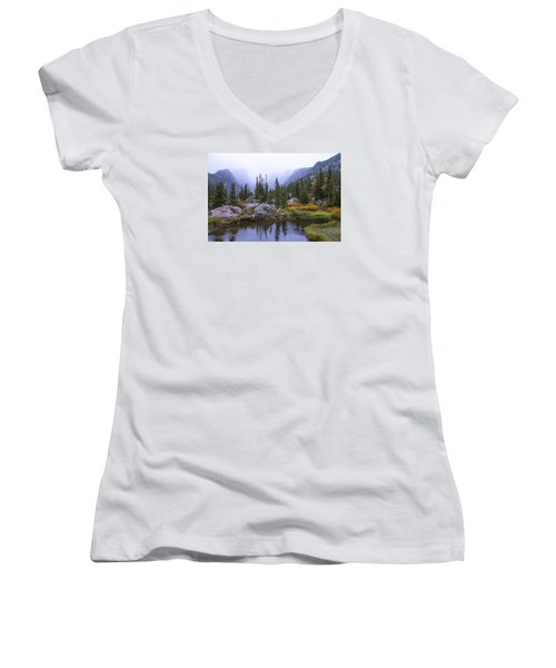 Saturated Forest Women's V-Neck T-Shirt (Junior Cut) by Chad Dutson