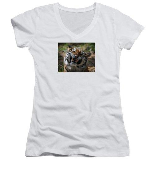 Say Cheese Women's V-Neck T-Shirt (Junior Cut) by Ernie Echols