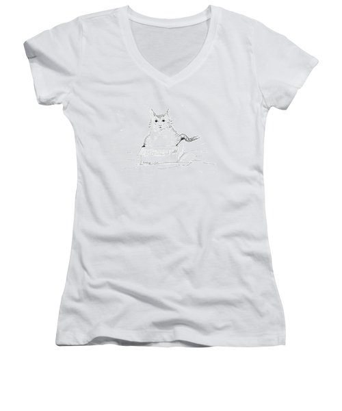 Schrodinger Cat Women's V-Neck T-Shirt (Junior Cut) by Regina Valluzzi