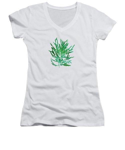 Women's V-Neck T-Shirt (Junior Cut) featuring the mixed media Sea Green Seaweed Art Odonthalia Dentata by Christina Rollo