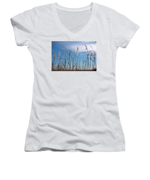 Sea Oats And Sky On Outer Banks Women's V-Neck T-Shirt (Junior Cut) by Dan Carmichael
