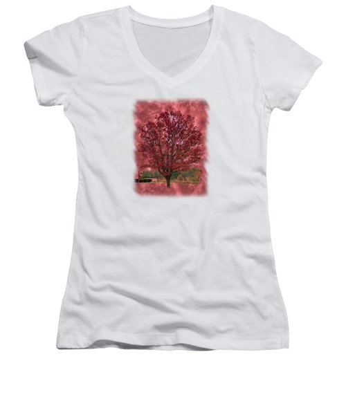 Seeing Red 2 Women's V-Neck T-Shirt (Junior Cut) by John M Bailey