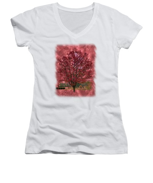 Seeing Red 2 Women's V-Neck