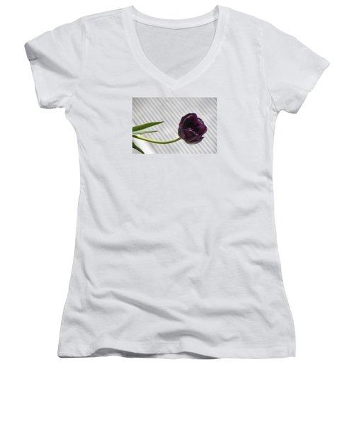 Seeking The Light Women's V-Neck T-Shirt (Junior Cut) by Morris  McClung