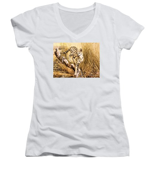 Serval Women's V-Neck T-Shirt