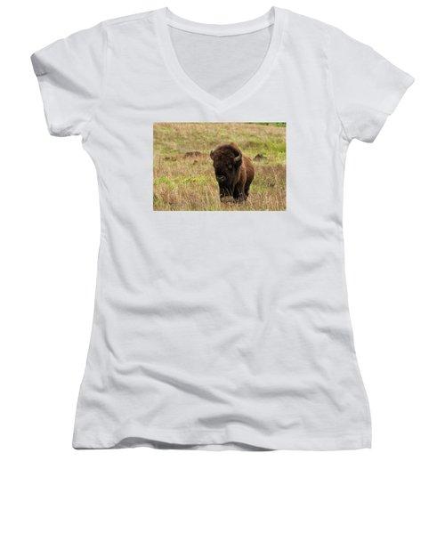 Shaggy Beast Women's V-Neck T-Shirt