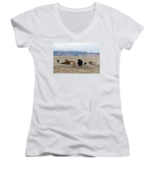 Women's V-Neck T-Shirt (Junior Cut) featuring the photograph Shaggy-coated Cattle Near Jefferson by Carol M Highsmith