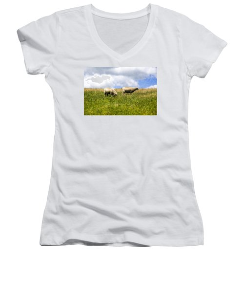 Sheep In New Zealand Women's V-Neck (Athletic Fit)