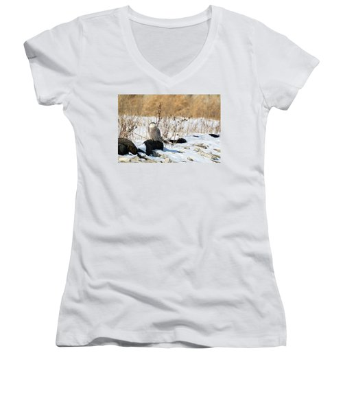 Sitting Snowy Women's V-Neck