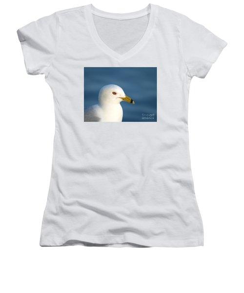 Smiling Seagull Women's V-Neck T-Shirt