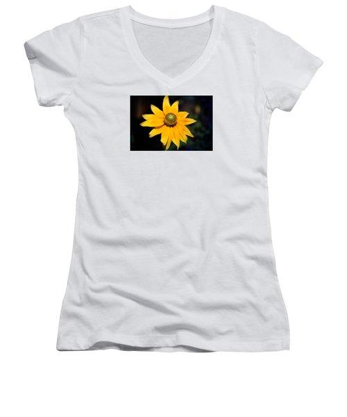 Smiling Sun Women's V-Neck