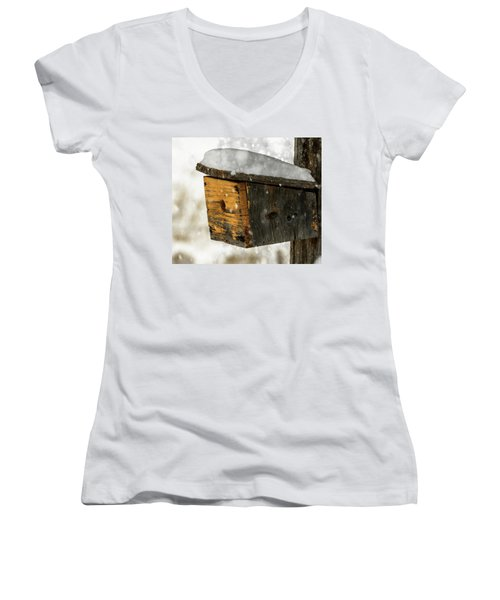 Snow Cover Women's V-Neck T-Shirt