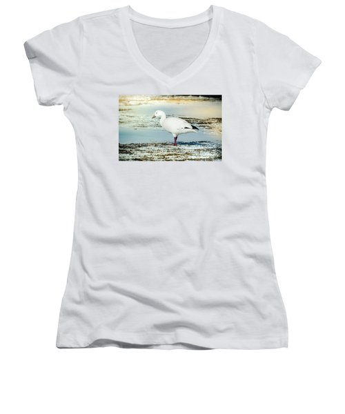 Women's V-Neck T-Shirt (Junior Cut) featuring the photograph Snow Goose - Frozen Field by Robert Frederick