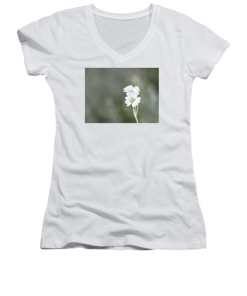 Snow In Summer Women's V-Neck