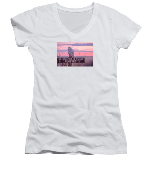 Snowy In The Meadow Women's V-Neck T-Shirt (Junior Cut) by Kelly Marquardt