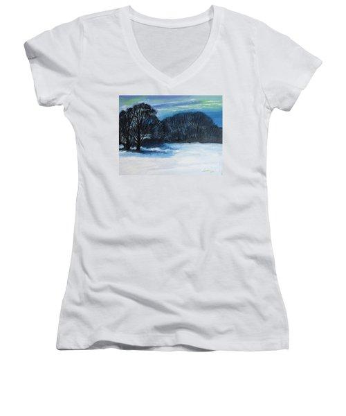 Snowy Moonlight Night Women's V-Neck T-Shirt