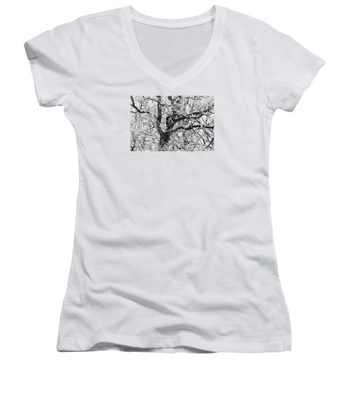 Snowy Oak Women's V-Neck