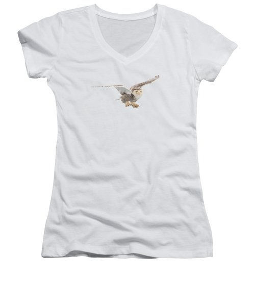 Snowy Owl T-shirt Mug Graphic Women's V-Neck (Athletic Fit)